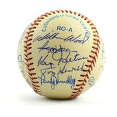 Old Timers Autographed Baseball with 21 Signatures! PSA/DNA Doerr-Jackson-Slaughter-McGraw