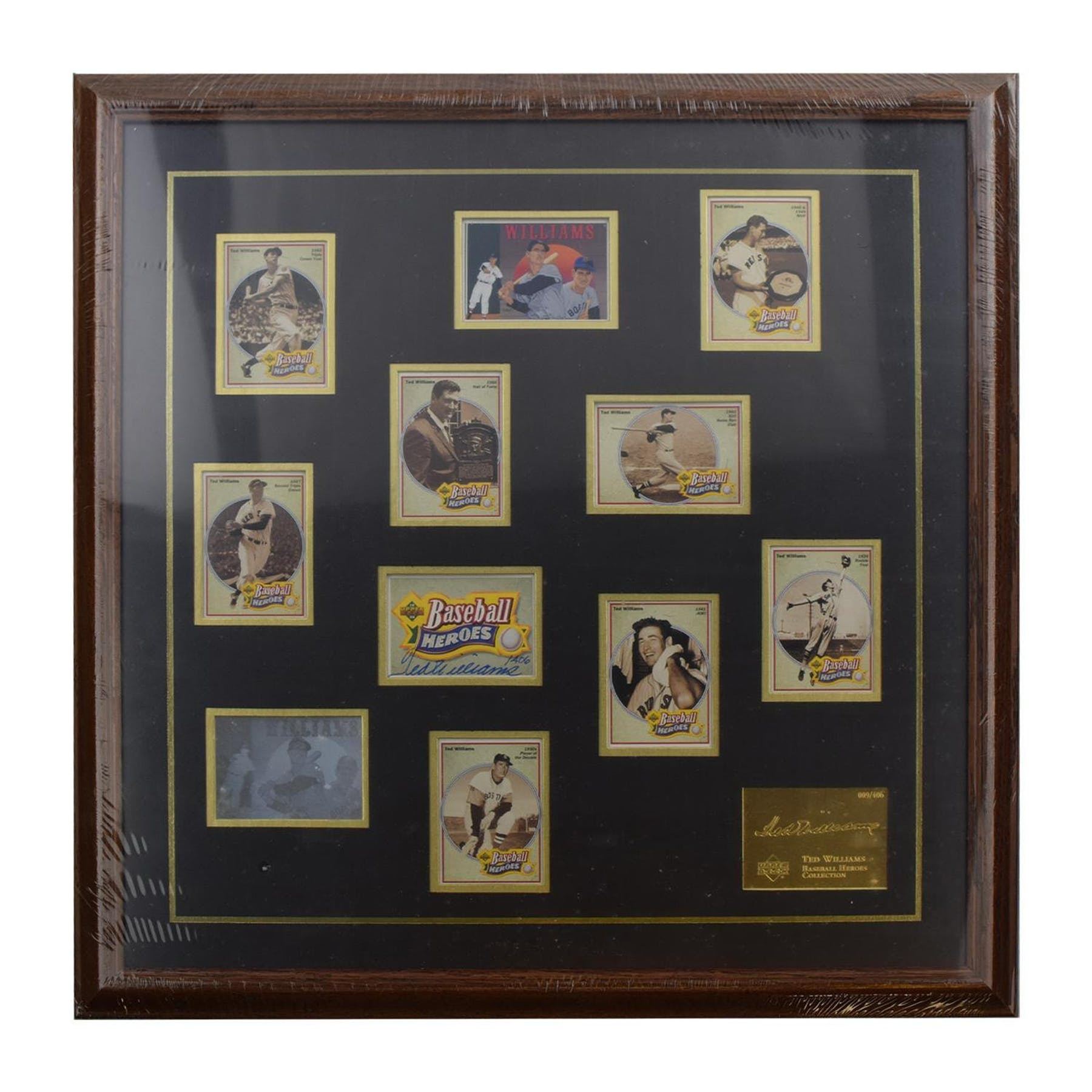 8920cec6bce92 Ted Williams Boston Red Sox UDA Autographed Framed Heroes of Baseball  Trading Card Set LE  406