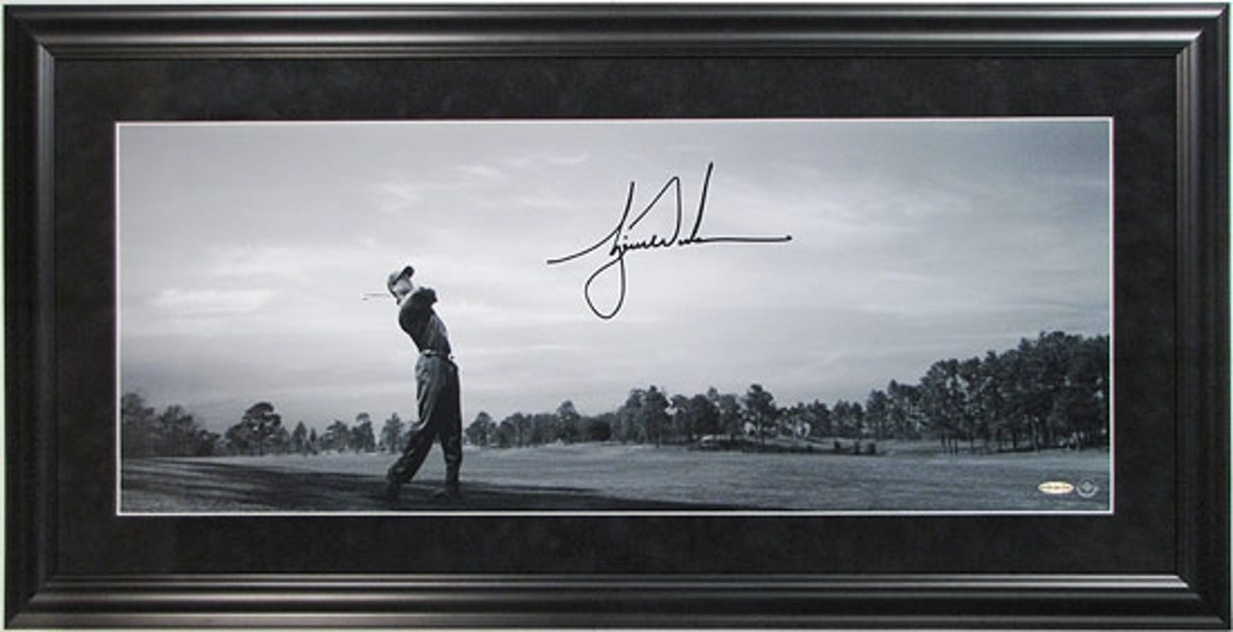 Tiger Woods Autographed Framed Golf Panoramic Photo (\